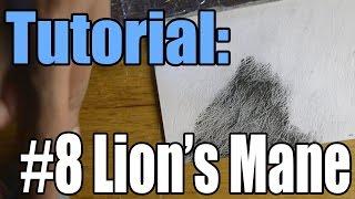 Tutorial: #8 How I Draw a Lion
