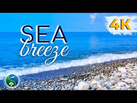 Звуки Моря ~ 1 час Видео Галечный Пляж с голубым небом и Звуками Прибоя на Морского Берегу
