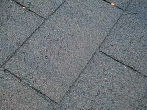 Storm Damaged Shingles Hale Hail Roof Repairs24 hr service Handyman services