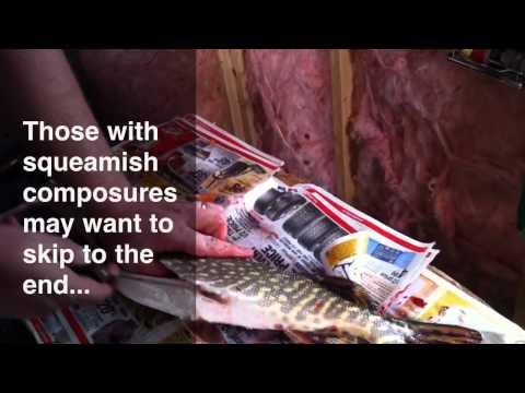 Ice Fishing In Saskatchewan - Video Montage