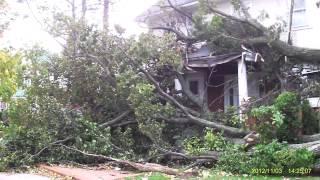 видео дерево упало на дом