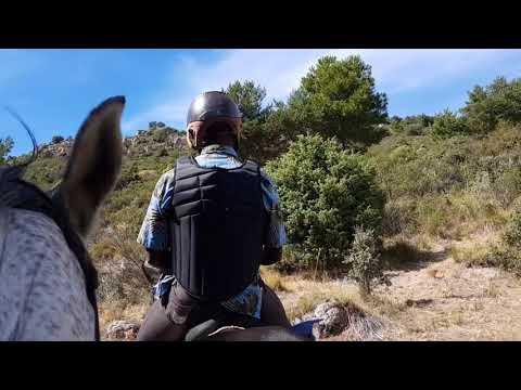 ThinkAiR Journey to MADRID MOUNTAIN NAVACERRADE SPAIN