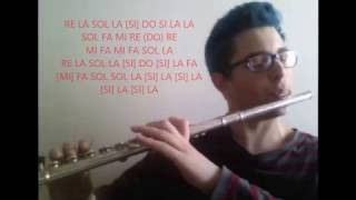 Video [FLUTE COVER] - Akame Ga Kill - Liar Mask OPENING 2 download MP3, 3GP, MP4, WEBM, AVI, FLV Mei 2018