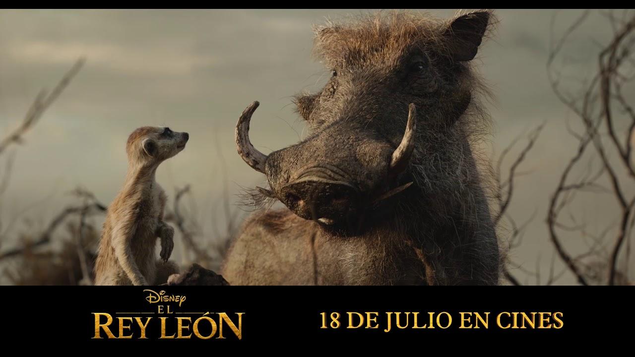 El Rey Leon 2019 Anuncio Timon Y Pumba Hd