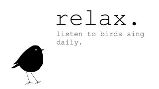 Relaxing Nature Sounds of birds singing  to Wake up to each Morning + The bird song ID game!