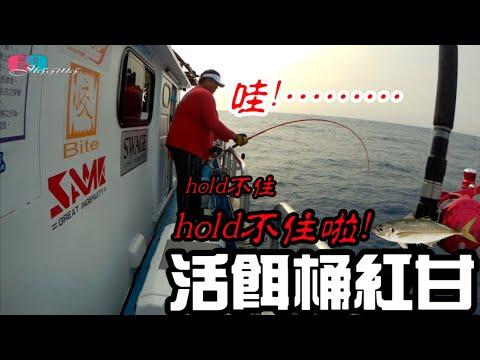 []  ,../ 2020/05/ 69J(69J Fishing Club)