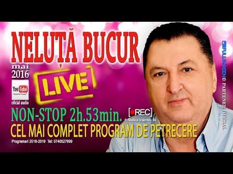 NELUTA BUCUR . Petrecere Live 2016 (oficial audio)