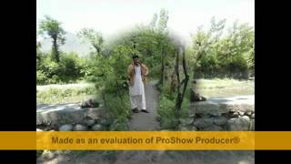 PASHTO ENGLISH ARABIC NEW SONG 2013