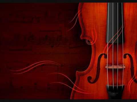 Suzuki Violin libro 10-01 Concerto para violin in D Major  1ºMov. W.A.Mozart