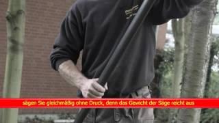 Kurzfilm Astsäge