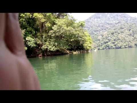 phim hanh dong set dit nhau PHIM CON HEO, PHIM ĐỒI TRỤY GÂY TÁC HẠI KINH HOÀNG LÊN NÃO BỘ
