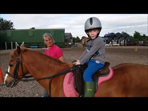 Harry has a horse riding lesson