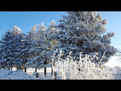 "Yakima ""Snow Apocolypse"" this weekend?"