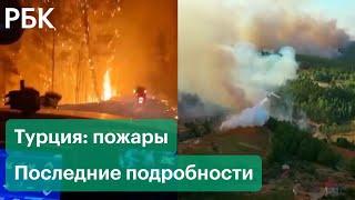 Лесные пожары в Турции поджигатели эвакуация туристов пламя у порога дорогих отелей и курортов