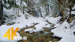 4K Winter Beauty oḟ Canadian Nature - Part #3 - Scenic Lakes and Waterfalls of Canada