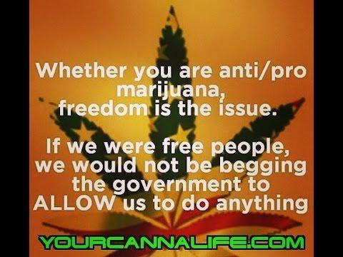 Rep Carlos Guillermo Smith files legislation to decriminalize cannabis possession in Florida.