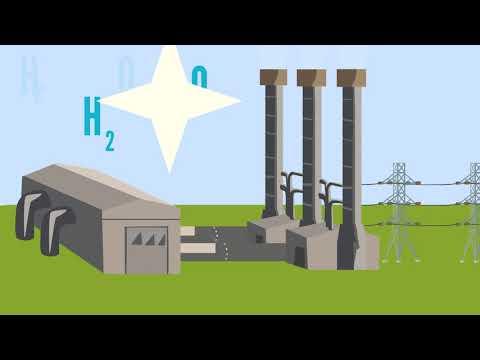 INL Direct Carbon Fuel Cells