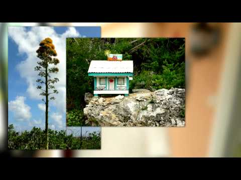 Cayman Brac- Caribbean, Cayman Islands-Cayman Brac Travel Video PostCard