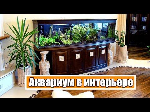 Аквариум в интерьере помещений (слайд-шоу из 31 фотографии)