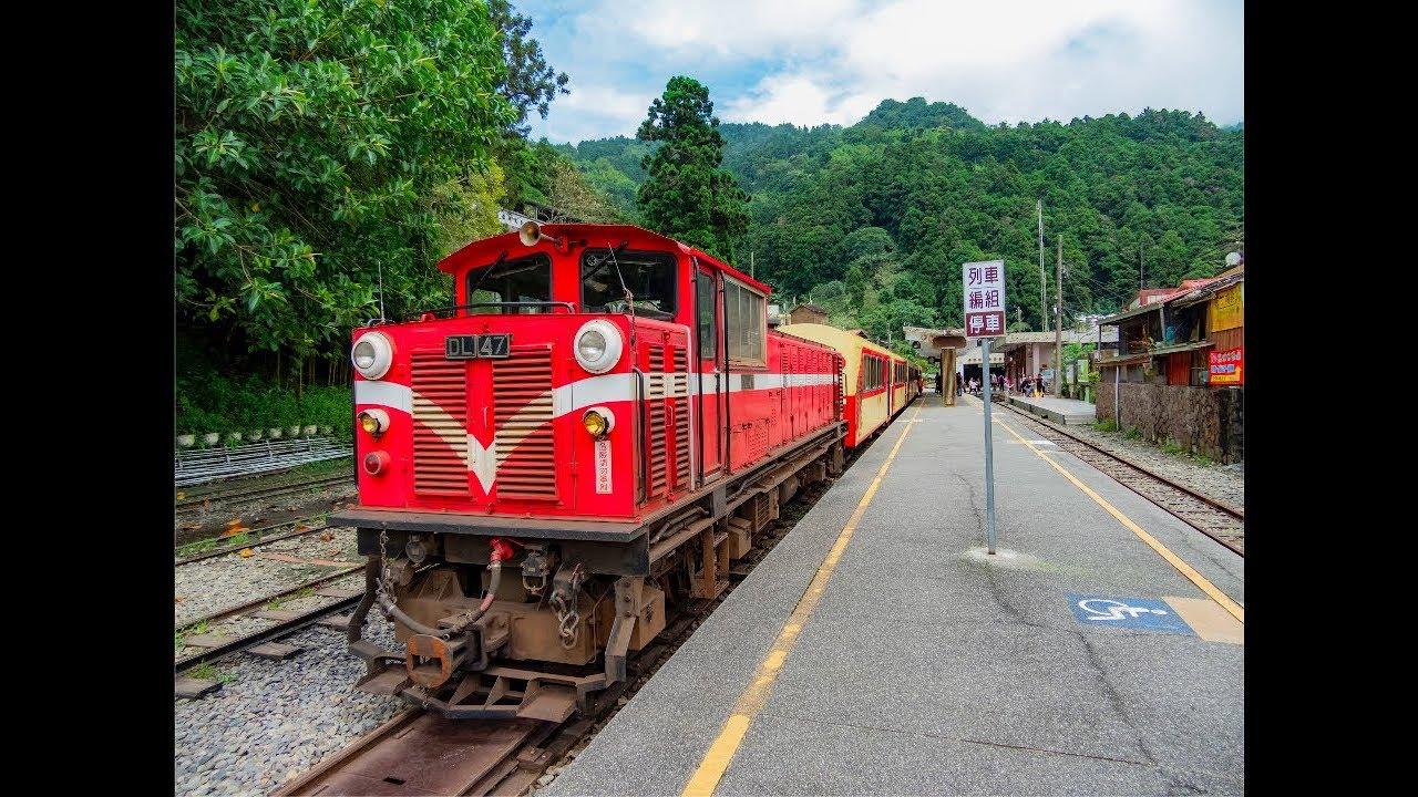 阿里山森林小火車來回窗外景觀 |嘉義北門驛|奮起湖|森林小火車之旅 - YouTube