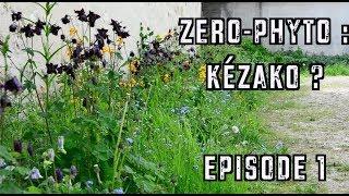 ZERO PHYTO : KEZAKO ? - EPISODE 1 - #ECOLOGIC'