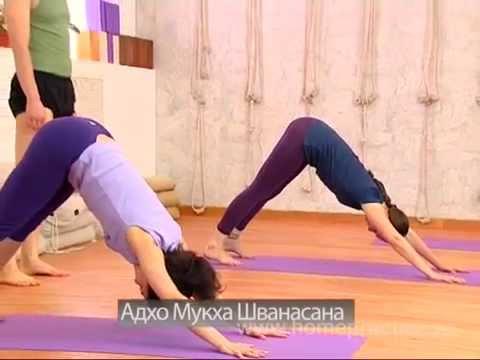 Все о йоге. Портал . Занятия йогой. Центр йоги