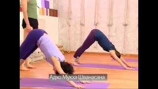 Практика йоги, прогибы назад