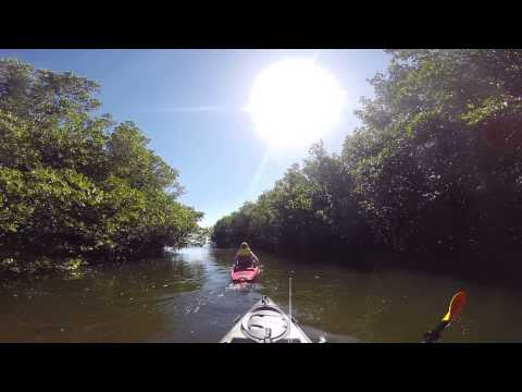 Kayaking at Matheson Hammock Park, Coral Gables, FL