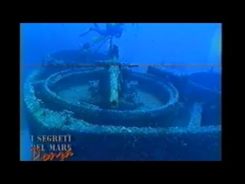 """Family routine diary """"dad's job WWII shipwreck documentary 1997"""""""