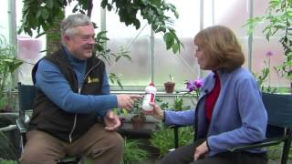12/15/14 UVM Greenhouse Director Colleen Armstrong on Biological Pest Control for Plants