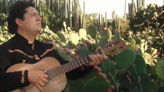 ¡Viva Mexico! mariachi, (Long Live México), Lágrimas negras PANCHO BALBUENA 655226120