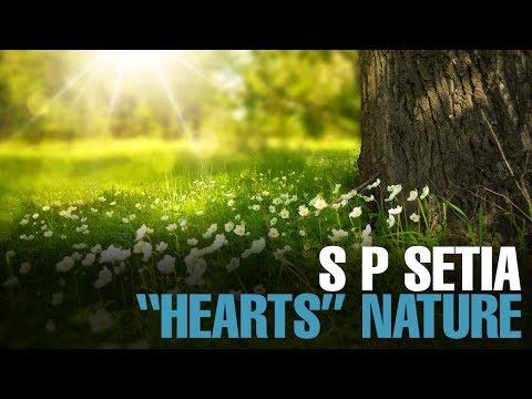 NEWS: S P Setia celebrates World Environment Day