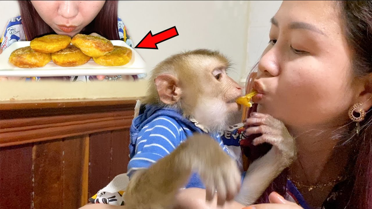 Baby Monkey | Mom Make Pumpkin Cake To Eat With DouDou Very Adorable