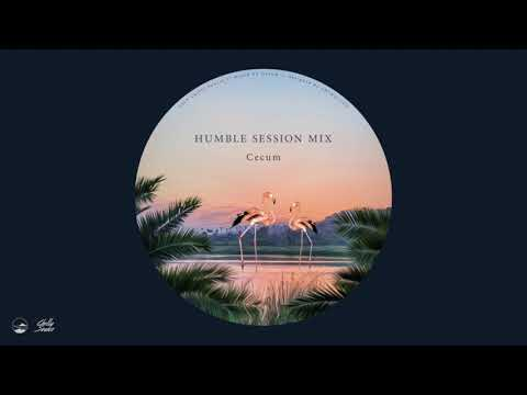 Humble Session Mix2 By Cecum (ChillySource)【NuDisco / R&B / House】