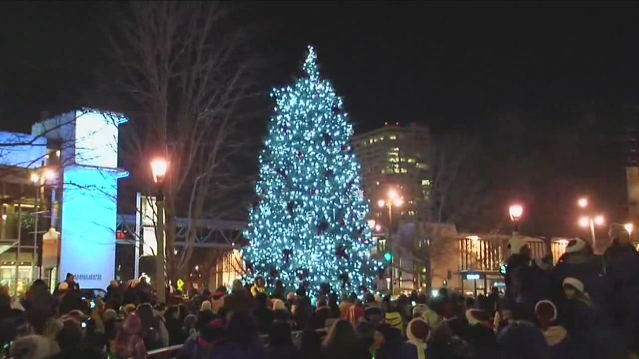 Red Arrow Park Tree Lighting Kicks Off Holiday Season