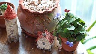 초겨울의 베란다정원. 시즌을 마감하는 식물들과 시작을 …