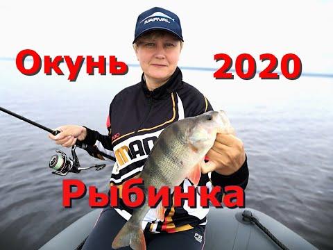 Вопрос: Какая рыба водится в Рыбинском водохранилище?