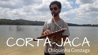O Corta Jaca - Chiquinha Gonzaga (piano and melodica cover)