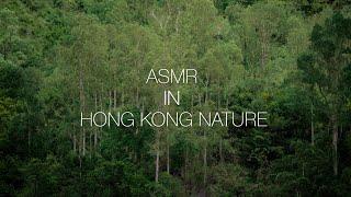 [360 Hong Kong Moments] ASMR in Hong Kong Outdoors