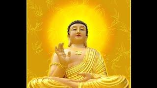 Triết Lý Nhà Phật  - Đời là Vô Thường- Nhặt lá bồ đề