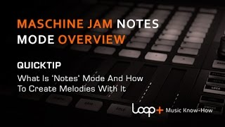 Native Instruments Maschine Jam - Notes Mode Explained - Loop+ Quick Tip
