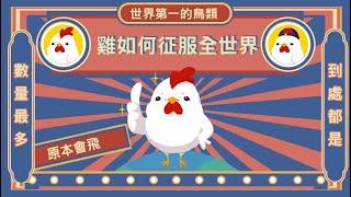 雞如何自廢武功 稱霸世界 ▶ 成為世界上最多的鳥類