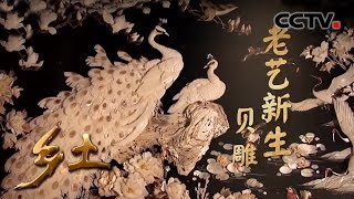 《乡土》 老艺新生 贝雕 20190717 | CCTV农业