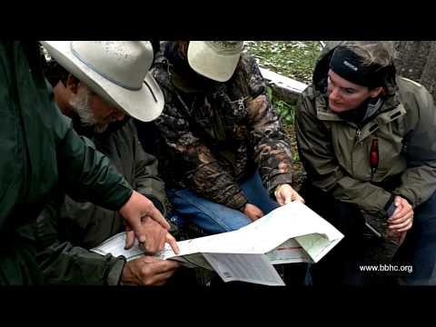 Yellowstone Horse Pack Trip