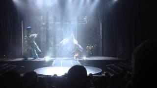 видео Cirque du Soleil шоу