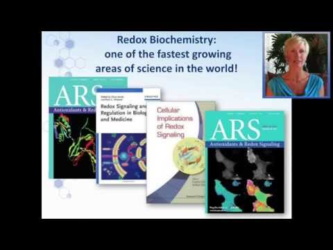 Detailed Introduction to ASEA