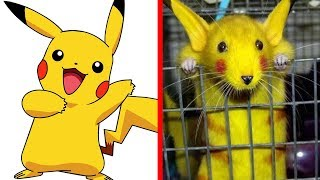 10 Pokemon You Won't Believe Exist in Real Life