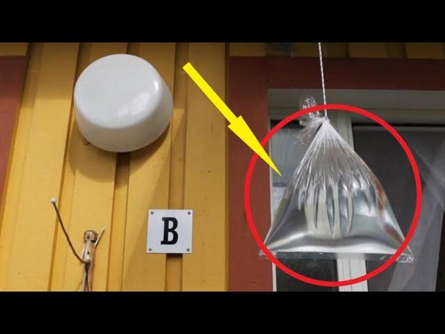 Соседи вешают пакеты с водой  Узнав причину, я тоже стал так делать!