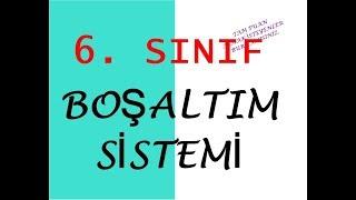 BOŞALTIM SİSTEMİ 6. SINIF