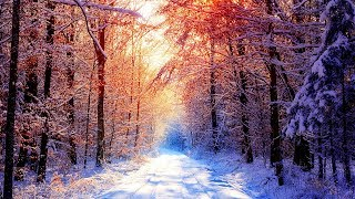 Прохладная Музыка, Релакс для Души, Исцеляющая Музыка для Отдыха. Зима 2018 #RMT